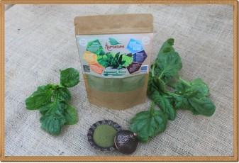 Ispanak Tozu - 100 gram