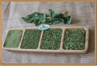 Ispanak Tozu - 500 gram