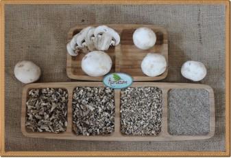 Kültür mantarı Tozu- 1 kg